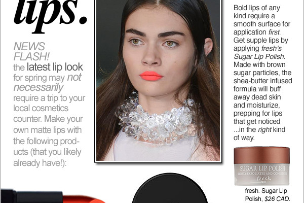 How to Get Matte Bright Lips.  Make-up Artist Tips and Article by Rhia Amio, Makeup Artist Toronto